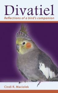 Divatiel: Reflections of a bird's companion